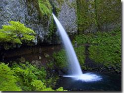 Ponytail Falls at Columbia Gorge